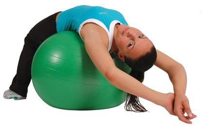 Εικόνα της MSD Μπάλα Γυμναστικής Mambo AB Gym Ball